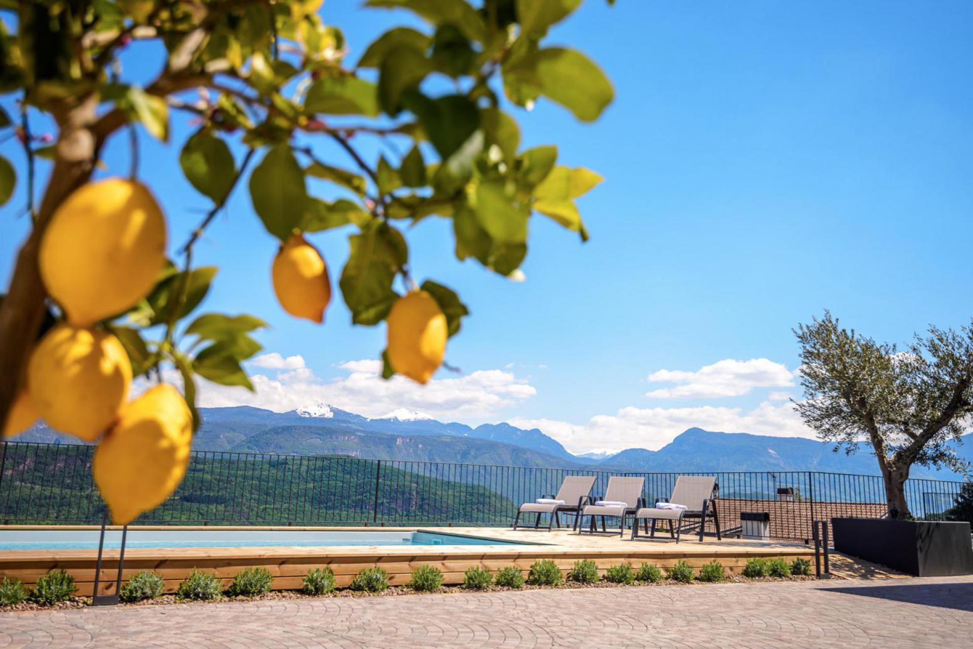 Agriturismo Dolomieten Agriturismo in de Dolomieten tussen wijngaarden en appelbomen