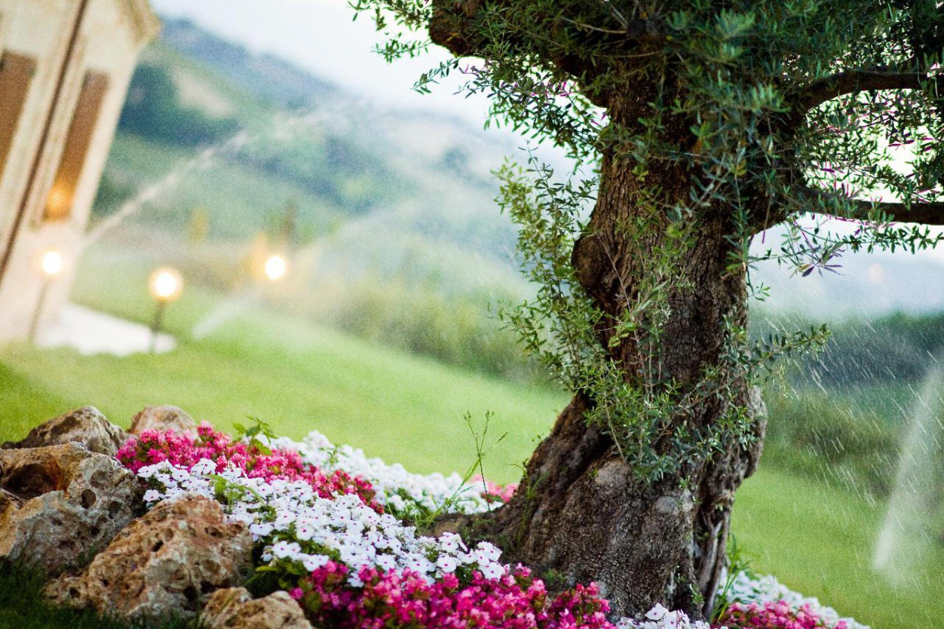 Agriturismo Le Marche Agriturismo le Marche, landelijk gelegen en kindvriendelijk