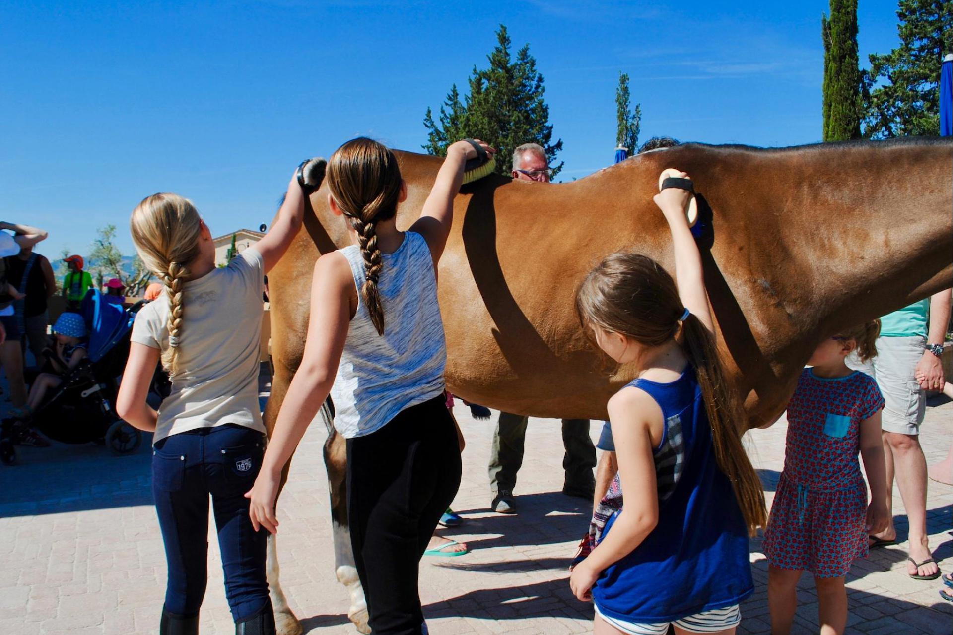 Agriturismo Toscane Authentieke agriturismo in Toscane met mooi uitzicht