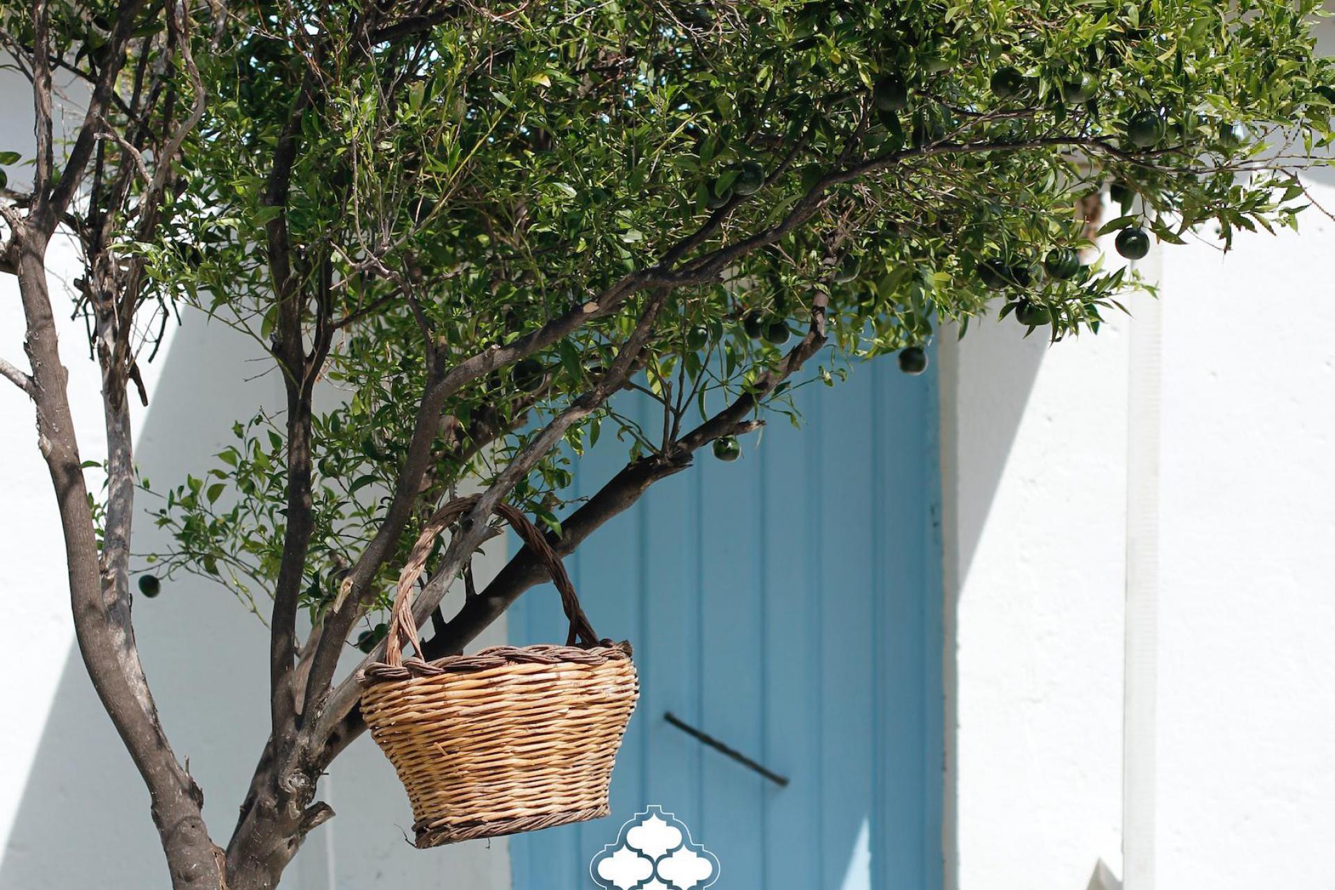 Agriturismo Calabrie B&B in Calabrie met uitzicht op zee en dichtbij strand