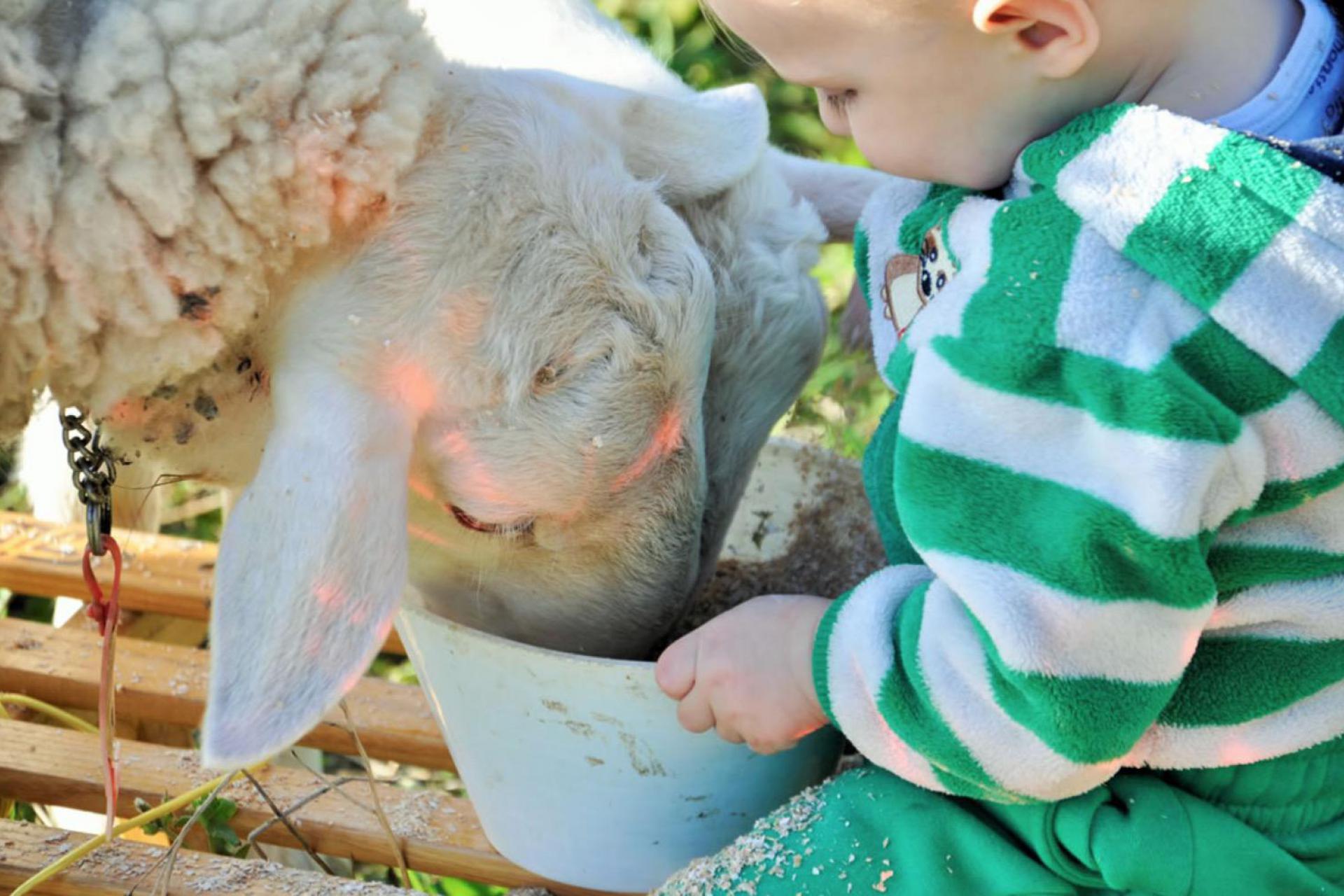 Agriturismo Toscane Leuke en kindvriendelijke agriturismo vlakbij zee in Toscane