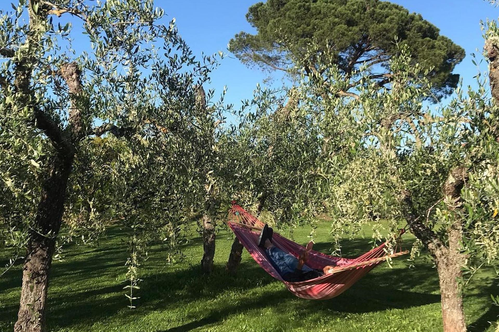 Agriturismo Toscane Luxe agriturismo dichtbij de kust in Toscane