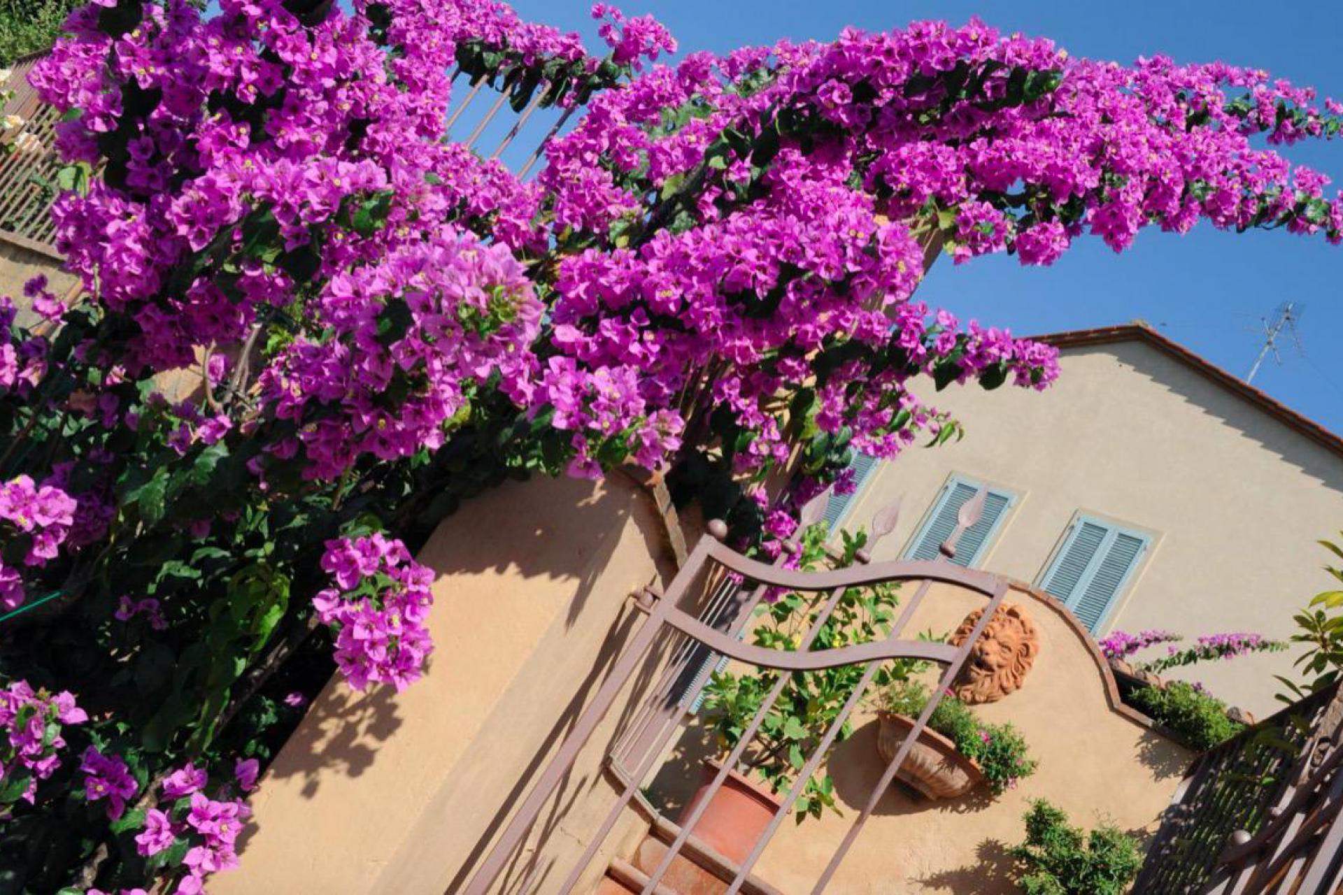 Agriturismo Toscane Luxe gemoedelijke agriturismo bij Volterra in Toscane