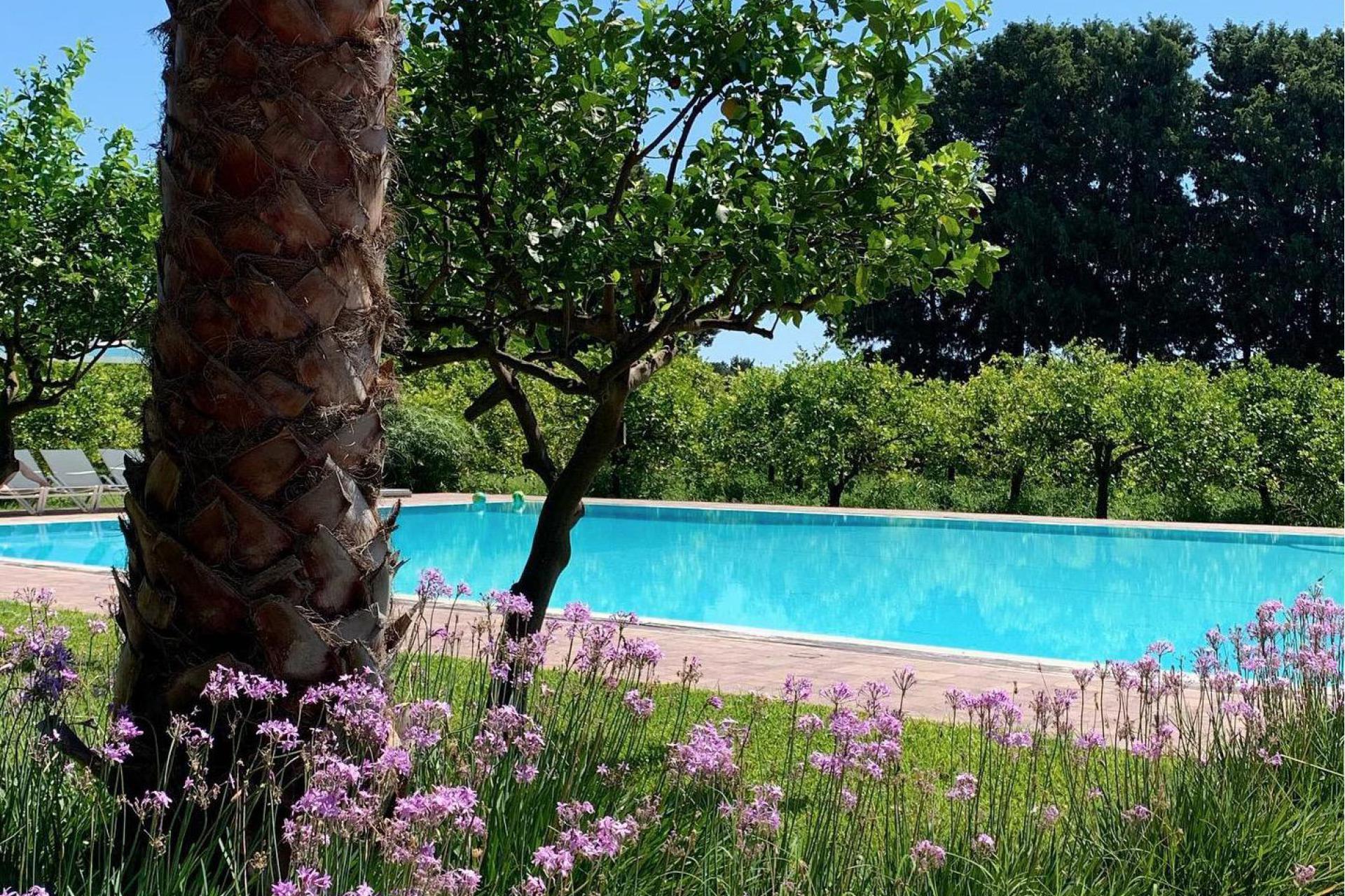 Agriturismo Sicilie Siciliaanse citrusboerderij vlakbij het strand