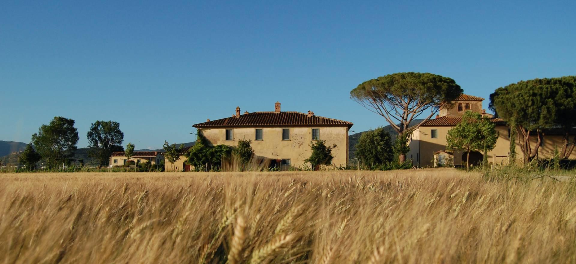 Agriturismo Toscane Mooie agriturismo niet ver van Cortona